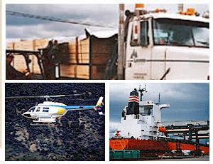 Worldwide Shipping Expertise